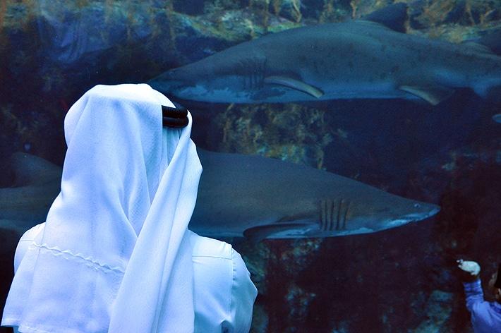 aquariumarab