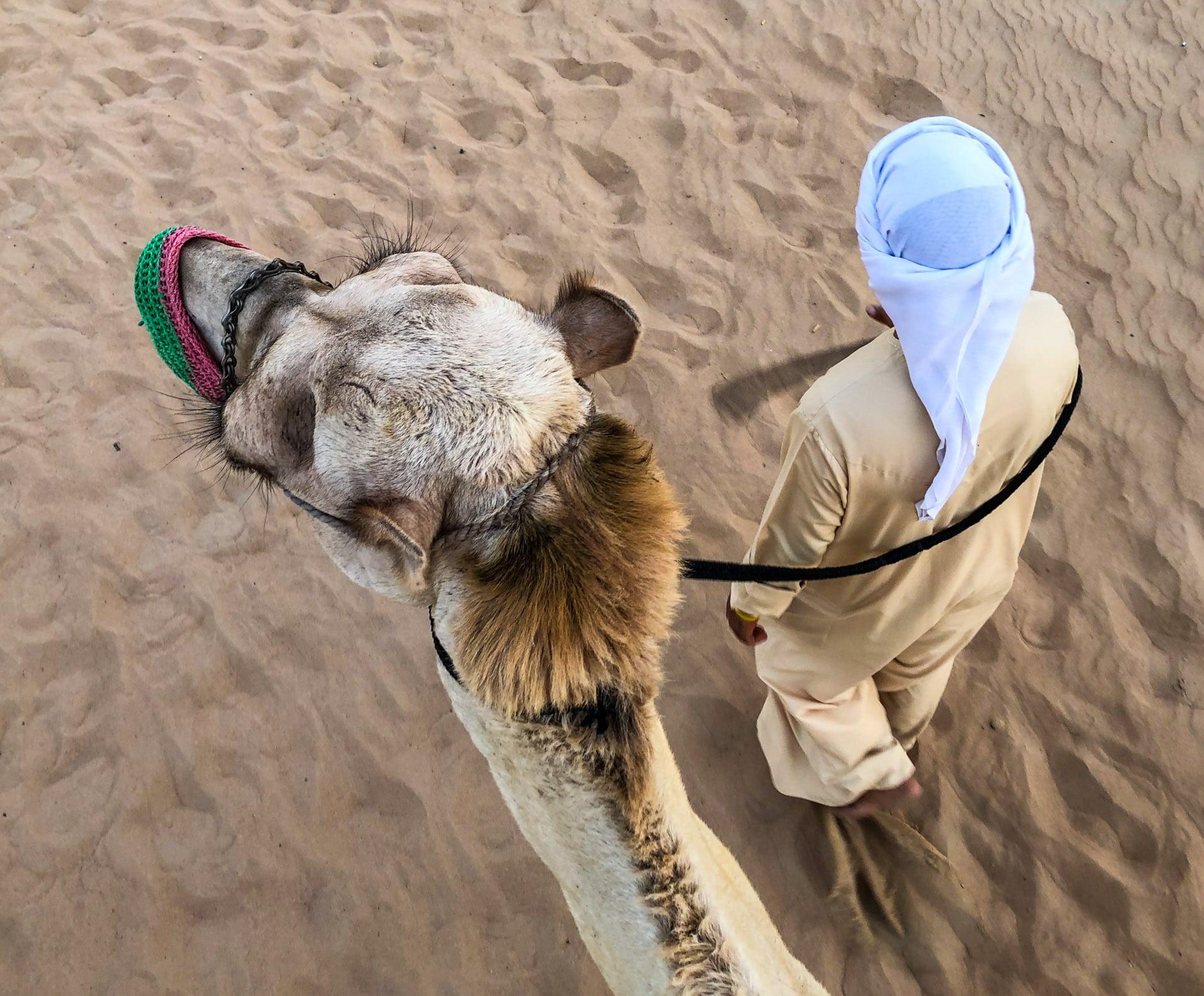 Pustynia Dubaju