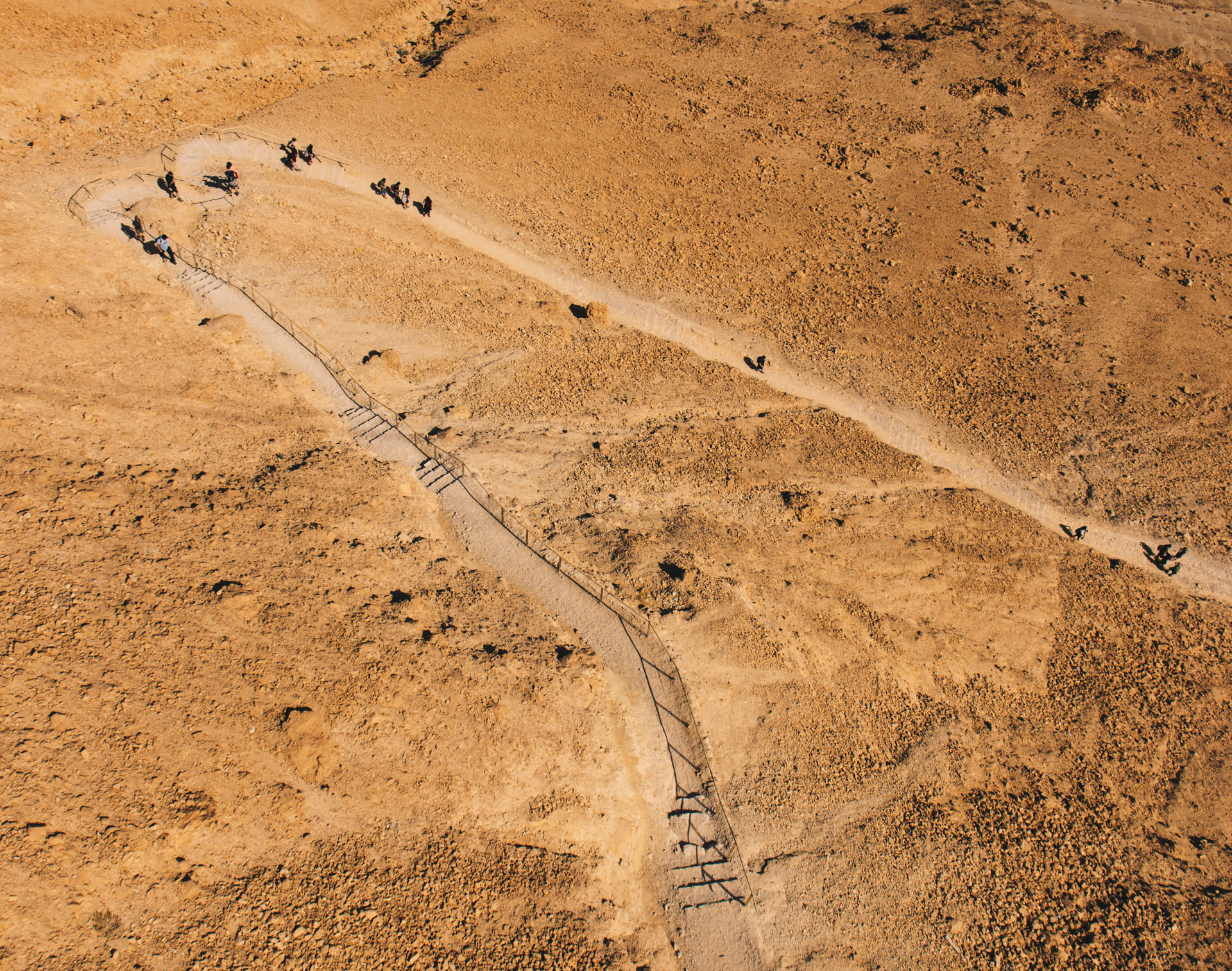 Snake Path