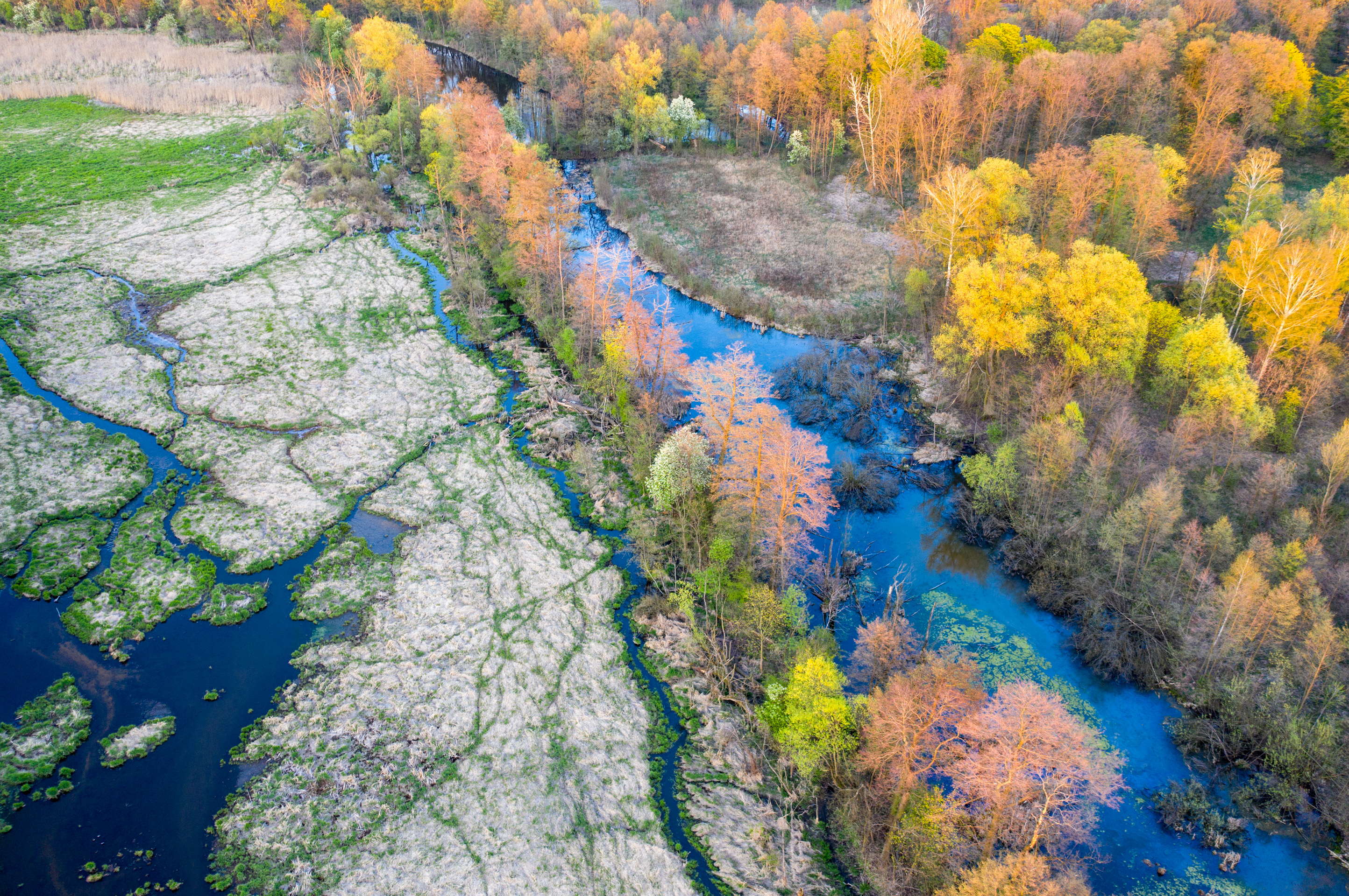 Rzeka Utrata