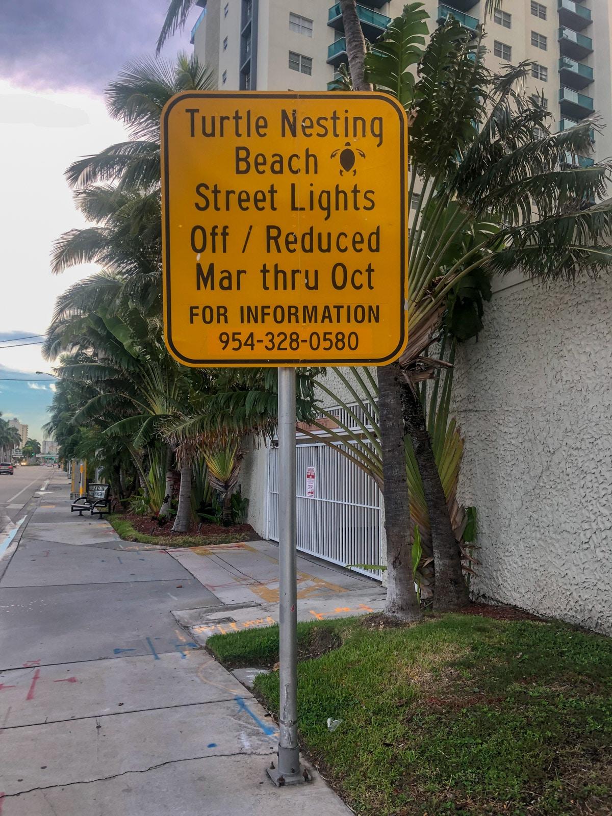 Żółwie, Floryda