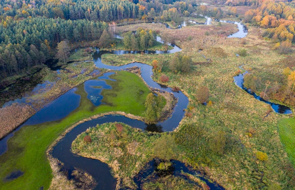 Bolimowski Park Krajobrazowy