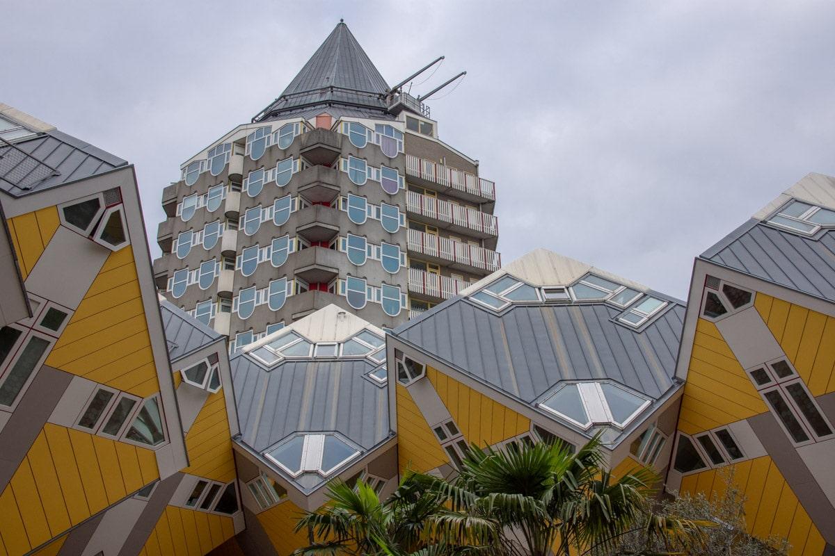 Domy kubiki w Rotterdamie