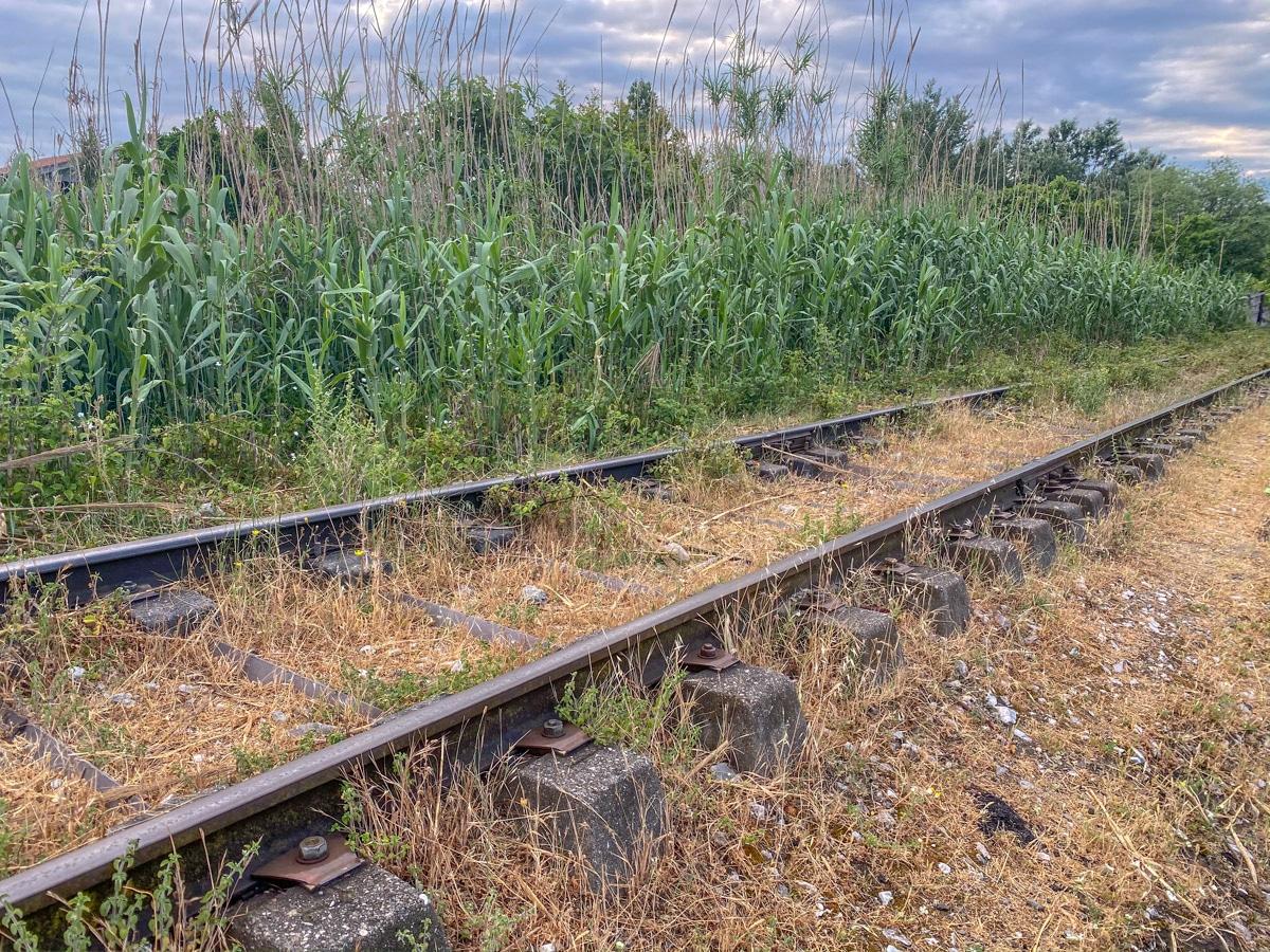Tory kolejowe w Durres