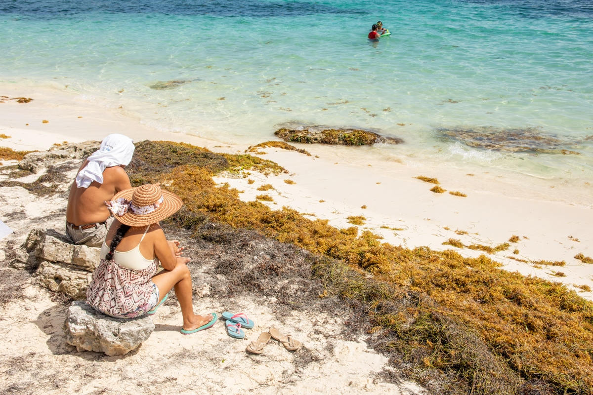 Wodorosty w Cancun