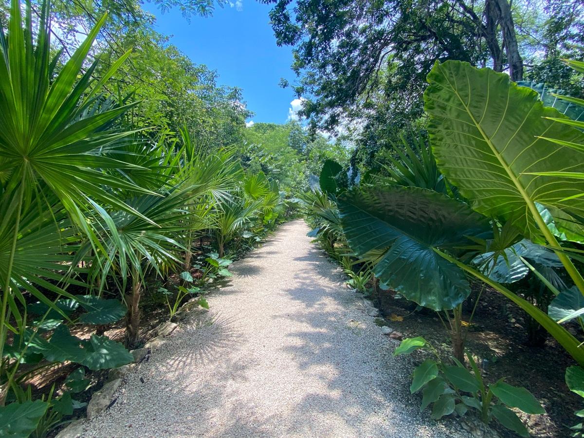 Cenote Tsukán