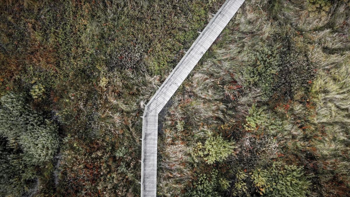 Bagno Całowanie - ścieżka